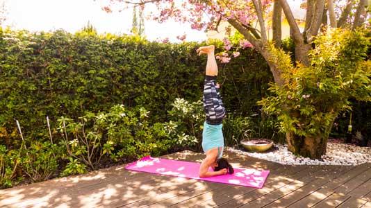 yoga in ingelheim vinyasa yoga